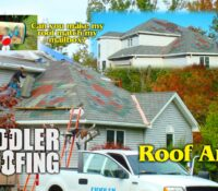 Roof Art Banner